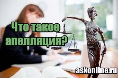 Картинка Что такое апелляция